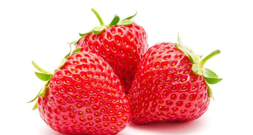 Erdbeeren Anbau
